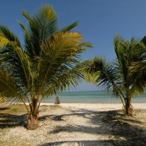 Silversand Beach Resort à Îles Andaman: