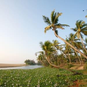 Neeleshwar Hermitage: Beach