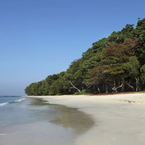 Taj Exotica Resort & Spa in Andamanen: Beach