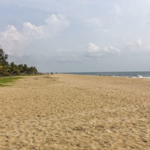 Marari Beach Resort in Mararikulam: Marari Beach