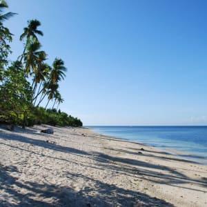Coco Grove Beach Resort in Siquijor: Siquijor Coco Grove beach