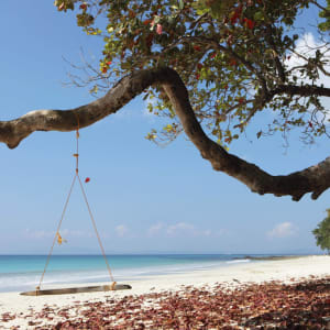 Taj Exotica Resort & Spa in Andamanen: Swing at the Beach