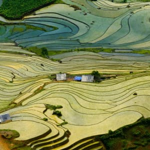 Abenteuer Sapa - Relax Package ab Hanoi: Beautiful terraced rice field in Lao cai province