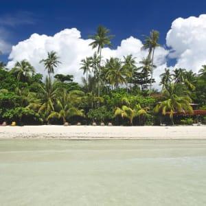 D'île en île individuellement aux Philippines de Manille: Bohol Panglao Island Alona Beach