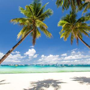 D'île en île individuellement aux Philippines de Manille: Boracay tropical beach