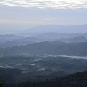 Sarawak – la nature dans toute sa splendeur de Kuching: Borneo Highlands Resort Border Viewpoint 2