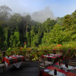 Borneo Wildlife / Tabin Wildlife Reserve ab Kota Kinabalu: Borneo Rainforest Lodge - Restaurant Deckt