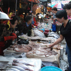 Südkorea Kompakt ab Seoul: Busan Jagalchi Fish Market
