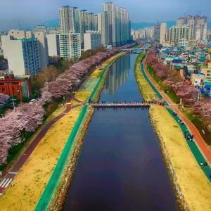 Corée du Sud compacte de Séoul: Busan Oncheoncheon Citizen Park