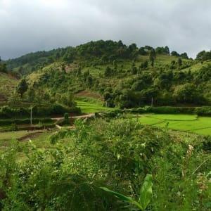 Randonnées dans le pittoresque Etat Shan (4 jours) de Lac Inle: Community Trail