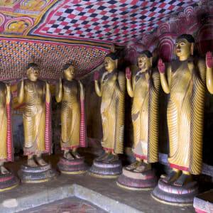 Découverte active du Sri Lanka de Colombo: Dambulla