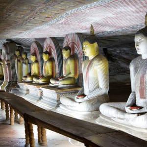 Les hauts lieux du Sri Lanka de Colombo: Dambulla