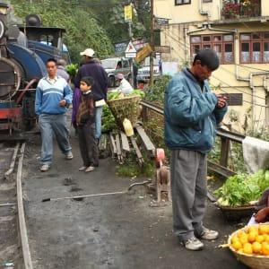 Himalaya Reise für Entdecker ab Bagdogra: Darjeeling: train