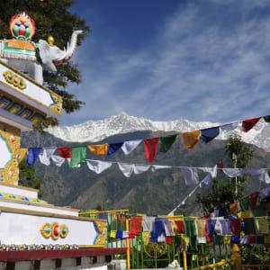 Au pied de l'Himalaya de Delhi: Dharamsala McLeod Ganj: Kalaczakra temple