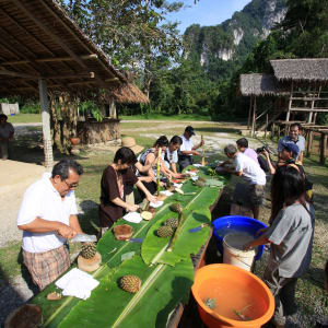 Elephant Hills & Rainforest Camp, Khao Sok Soft Adventure de Phuket: Elephant Experience