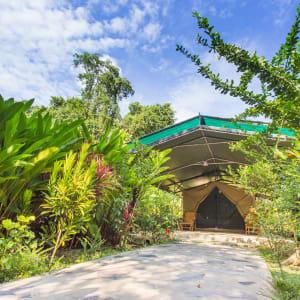 Elephant Hills - 2 Tage ab Phuket: Elephant Hills Garden