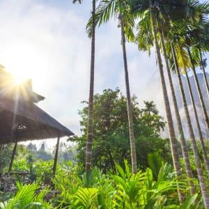 Elephant Hills - 2 Tage ab Phuket: Elephant Hills Maincamp