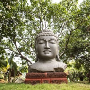 Mercure Goa Devaaya Retreat: Buddha Statue