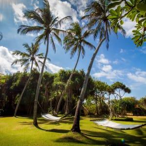Aditya Resort in Hikkaduwa: Garden