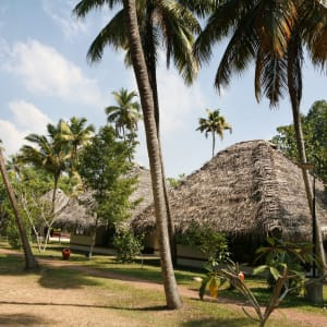 Marari Beach Resort in Mararikulam: Garden