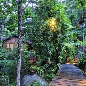JapaMala Resort in Tioman:  Garden