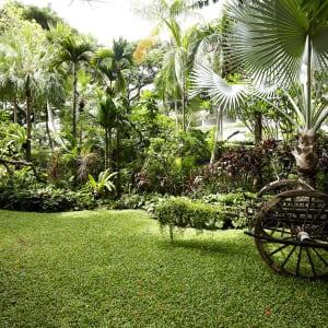 Anantara Riverside Bangkok Resort: Garden