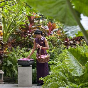 Mandarin Oriental à Bangkok: garden