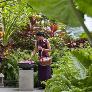 Mandarin Oriental in Bangkok: garden