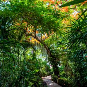 Laksasubha Hua Hin: Garden