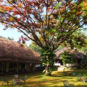 Spice Village in Thekkady: Garden