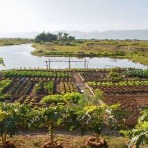 Sanctum Inle Resort à Lac Inle: garden panoramic