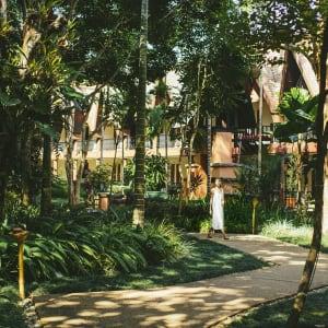 Anantara Golden Triangle Elephant Camp & Resort à Triangle d'Or: Garden Paths