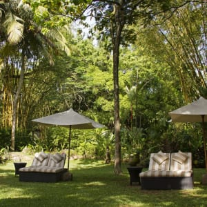 The Wallawwa in Colombo: Gardens