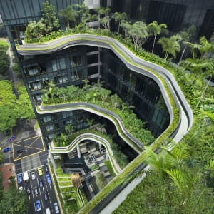 Parkroyal Collection Pickering in Singapur:  Sky Gardens