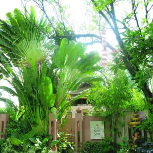 Ariyasom Villa in Bangkok: Spa Entrance
