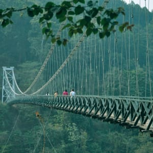 Glenburn Tea Estate in Darjeeling: Suspension Bridge to Sikkim