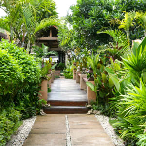 Samui Jasmine Resort in Ko Samui: Walkway