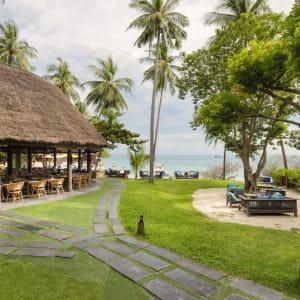 The Beach Club by Haadtien à Ko Tao: Insea Beach Bar & Grill Restaurant