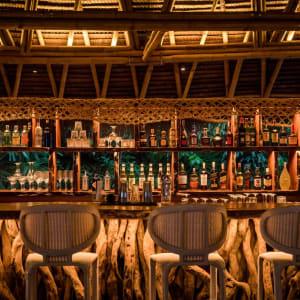 Bawah Reserve: Jules Verne bar interior