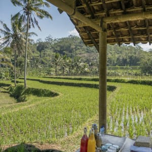 Amanjiwo in Yogyakarta: Picnic in the Rice Fields
