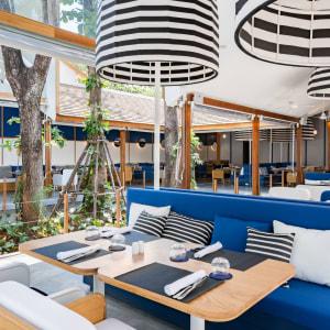 SALA Samui Chaweng Beach Resort in Ko Samui: Treehouse Restaurant + Bar