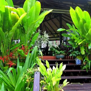 Shantaa Resort in Ko Kood: