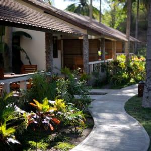 Cocotinos à Lombok: Garden