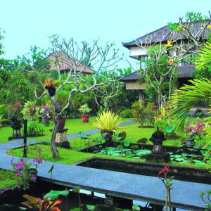 Alam Shanti à Ubud: Garden