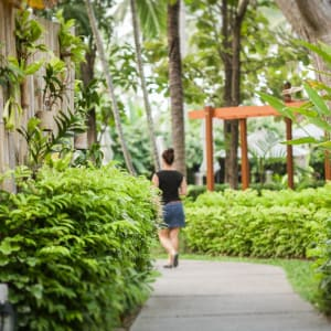 Peace Resort à Ko Samui: Garden