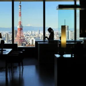 Park Hotel Tokyo: Reception