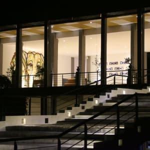 Aliya Resort & Spa in Sigiriya: Stairway to Lobby
