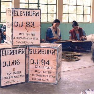 Glenburn Tea Estate in Darjeeling: Tea Chests