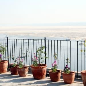 Suryauday Haveli à Varanasi: Terrace