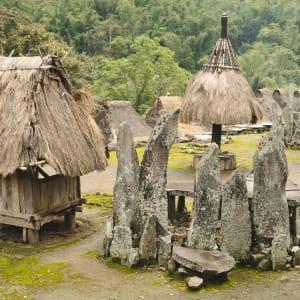 Flores - Traditionen, Riten und Vulkane ab Ende: Flores Bajawa Bena village